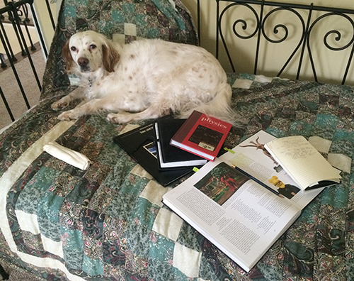 My Dog Woody Is Concerned By My Reading Choices—physics, Time Travel And Chaos Magic.